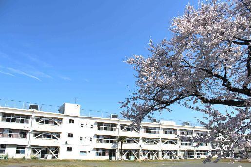 東京都立八王子盲學校